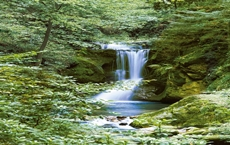 00364_Waterfall_in_Spring_print