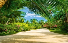 00438_Tropical_Pathway_print